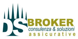 DS Broker Logo